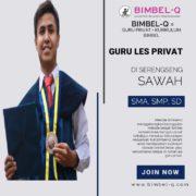 GURU LES PRIVAT DI SRENGSENG SAWAH JAKARTA SELATAN. INFO BIMBEL PRIVAT